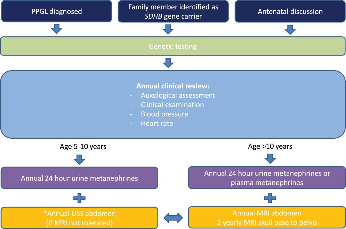 An analysis of surveillance screening for SDHB-related