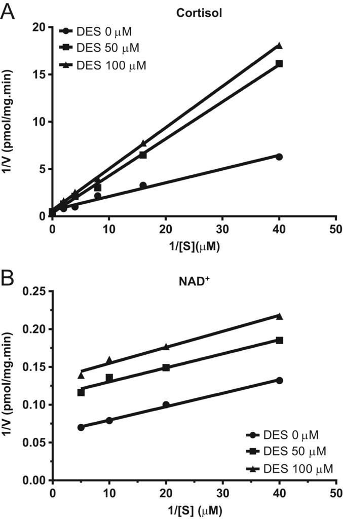 Diethylstilbestrol inhibits human and rat 11β-hydroxysteroid